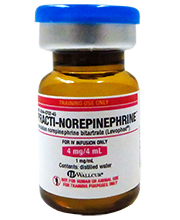 Practi-Norepinephrine™ (for training) 475NE